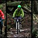 Severed Dick Triptych - Mount Seymour
