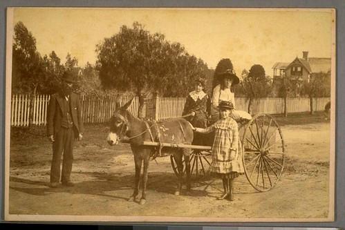 Donkey Cart in SB - 1887.2