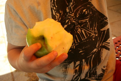 Darth Vader vs. Apple