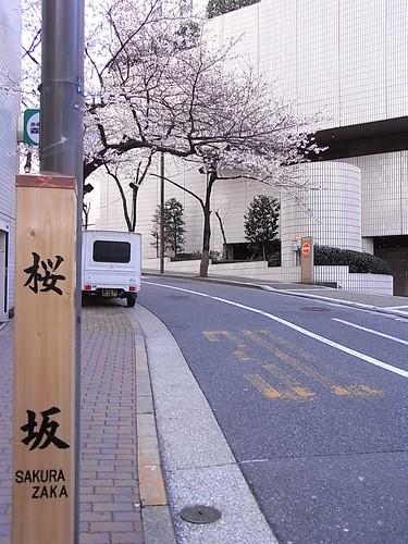 RIMG1387 桜坂 1 Akasaka Minato-Ku Tokyo