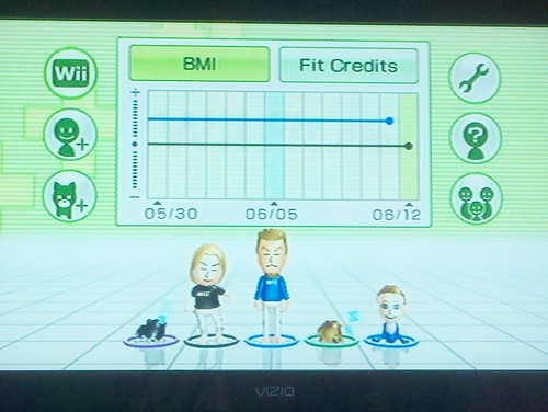 Wii Fit Plus Family