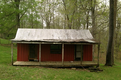 At the Edge of the Woods (~ Lone Wadi ~) Tags: shack tinroof abandoned house abandonment rural crittendencounty kentucky woods forest