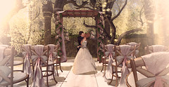 Wedding kiss (meriluu17) Tags: astralia wedding kiss romantic romance pink callas flower light lights ceremony magic magical outdoor people husband wife marriage married fantasy kissing hold couple