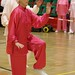 Dutch Tai Chi Festival-159