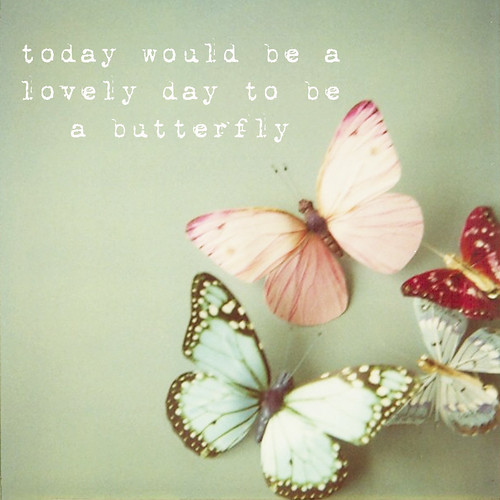 today would be a lovely day to be a butterfly by SusannahT.