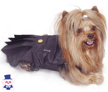 roupas de cachorro