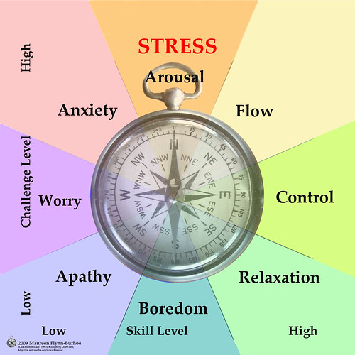 Mind-Brain Compass: Stress, Flood, Flow