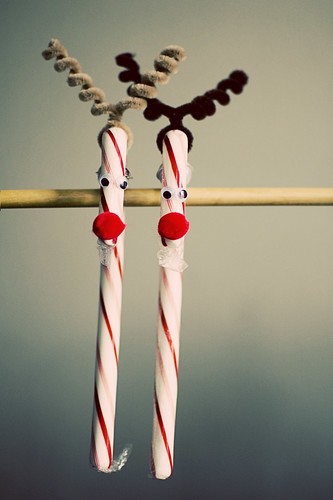 365.348: the Rudolphs