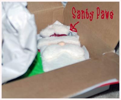 Santy-Paws