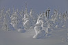048 SNOW PEOPLE (kyody3) Tags: sleds