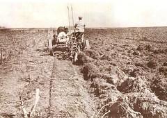 provincia 073 (flegisto) Tags: 1922 miralles albumdemiralles