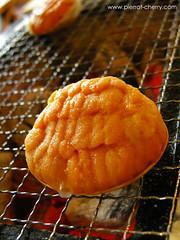 八戶燒釀海膽