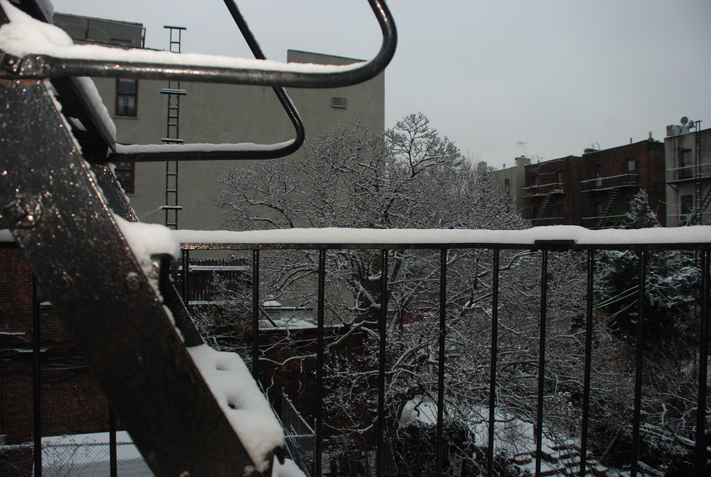 snow on the Brooklyn fire escape