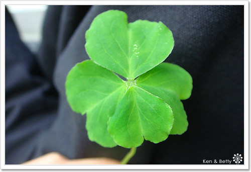 lucky-1
