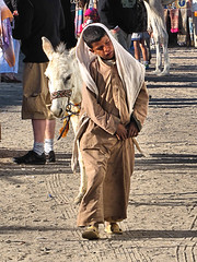 """Come On Mate...Home Time"" (oldt1mer) Tags: africa boy holiday mountains market traditional egypt donkey reststop egyptian luxor hurghada makadi"