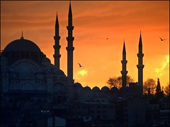 sunset over the mosques of Istanbul (maios) Tags: winter sunset red sky cloud color birds turkey europa istanbul mosque turchia  maios minarettes     abigfave   anawesomeshot             musictomyeyeslevel1