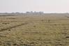 Rijperweg - Uitdam (BrenPict) Tags: holland rural farm polder 2010 waterland uitdam