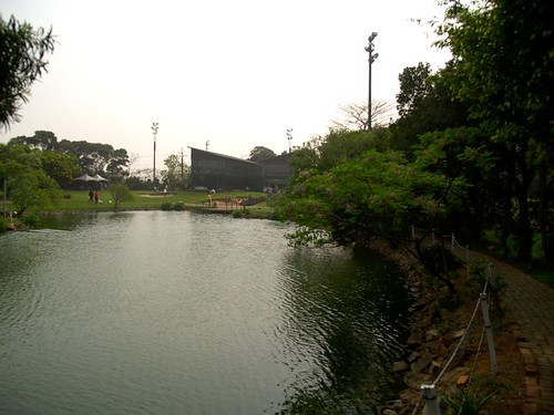 綠風的水池很大,是好幾個小水池連結成的