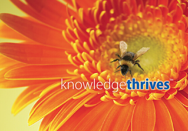 Knowledge Thrives by Curry Rockefeller Group
