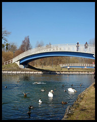 Tollensesee Oberbachbrücke Neubrandenburg