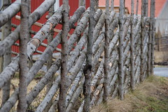 Traditional Swedish Fence (Let Ideas Compete) Tags: fence spring sweden traditional swedish nordic scandinavia scandinavian gnesta grdesgrd whyilovesweden