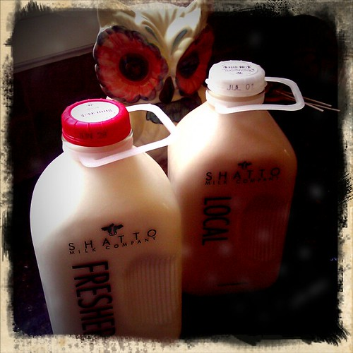 shatto milk by valerie-in-wonderland