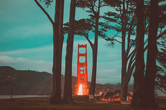 Nightfall. San Francisco, USA (Marji Lang Photography) Tags: 2017 america americanlandmark bayarea california dusk goldengate goldengatebridge northamerica pacificcoast sf sfo sanfran sanfrancisco sanfranciscobay travelphotography us usa unitedstates unitedstatesofamerica westcoast bridge colorphotography colors cypress famous horizontal landmark landscape night nightphotography nightfall nightshot nopeople northerncalifornia panoramicview photography redbridge tones tourism travel trees turquoisesky view viewpoint vistapoint