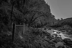 The Banister (Brian Travelling) Tags: travel travelling argyll argyllshire forest walk trail river rocks mono monochrome trees tranquil tranquility beauty beautiful