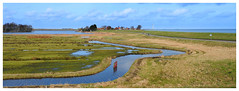 Noord-Hollands landschap (Ger Veuger) Tags: landschap landscape panorama noordholland noordhollandslandschap dutchlandscape waterland uitdam uitdammerzeedijk dijk dike markermeer horizon hollandslicht dutchlight