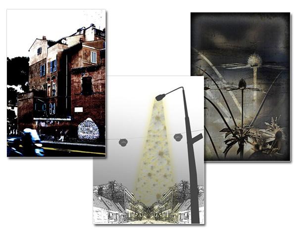Galleri-bilder