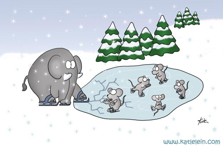 elefant auf eis