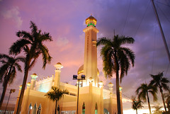 mosk and palms (Ron Knox 2001) Tags: travel flowers houses sea sky people tourism birds fauna clouds buildings boats temple fishing sand flora dragonflies religion markets chinese sunsets insects palace east exotic national rivers borneo beaches brunei malay mosques activities amedeo istana seri chinese village south building nikon palace temple dress wedding bruneis water pacific asia traditional d80 sultan asia jungle brunei malay malay bandar begawan brunei