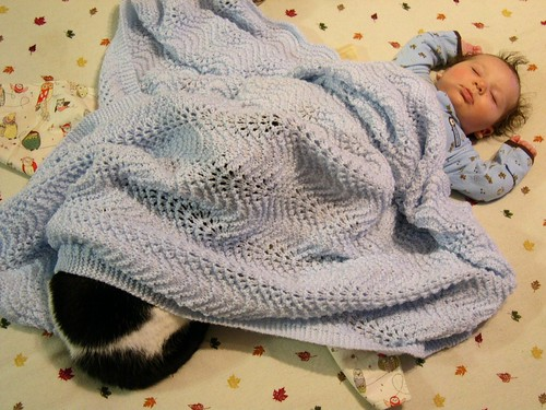 Hybrid Humans Cat Cat Baby Hybrid
