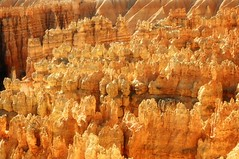 Sunset Point, Bryce Canyon National Park (andrew c mace) Tags: park canyon national bryce hoodoos sunsetpoint brycecanyonnationalpark navajoloop bryceamphitheater
