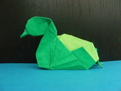 Duck (Design by Shiri Daniel)