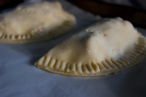 Savory Chicken Pocket Pies - Shutterbean
