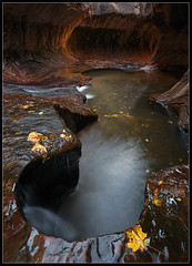 Wormhole (Mike Hornblade) Tags: fall water subway zion zionnationalpark variosonnar163528za