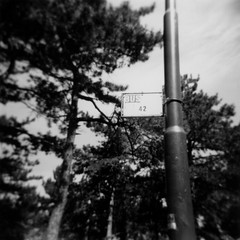 L'autobus Definitivo (ovvero: Pensiero Profondo) (ale2000) Tags: 2 blackandwhite bw white black bus sign alberi mediumformat square geotagged blackwhite holga 4 bn pole busstop number ilfordhp5 stop photowalk hp5 cartello palo autobus bianco ilford nero 42 biancoenero trieste numero carso definitivo pini lynched fermata montegrisa fermatadautobus formaggino lavitaluniversoetuttoquanto aledigangicom ilnumerodeldiavolo ilnumerodidio geo:lat=45693949 geo:lon=13750327
