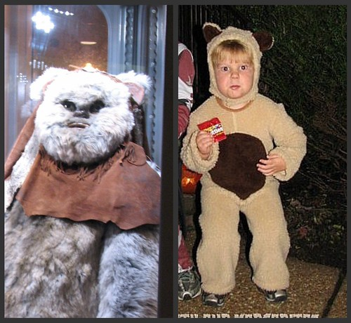 Bear & The Ewok