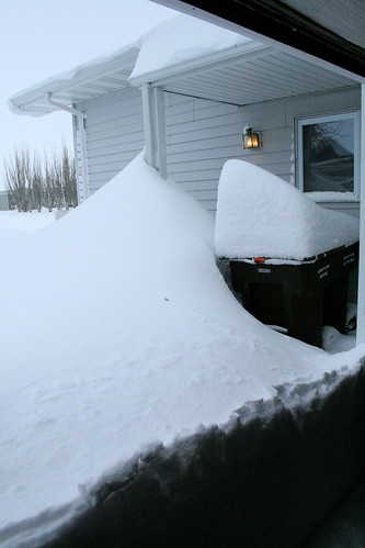 The solid wall of snow from the garage door to my kitchen window.