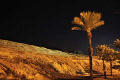 Golden night (Noctron) Tags: old trip travel vacation mountains history nature colors stone night trekking landscape israel sand ancient nikon mediterranean alone desert wind outdoor hiking antique gap windy calm midnight nikkor prehistoric discovery deadsea far mystique indestructible d90 noctron noctraeon