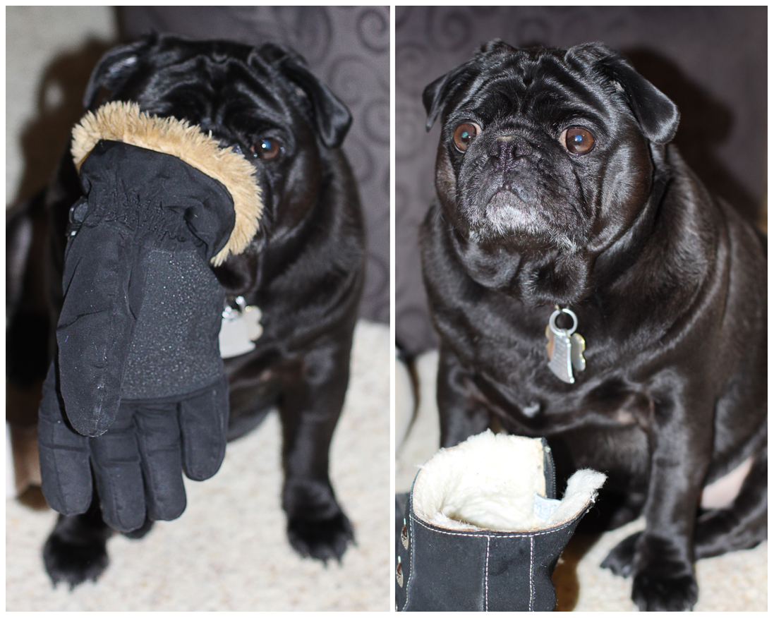 here's your glove, mom, let's go out! here's your boot, mom, let's go out!