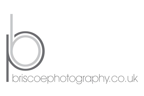 New Briscoe photography logo