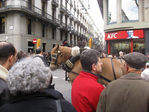 horse between McDonalds and KFC