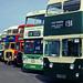 Bus rally lineup