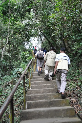 Stairs to Callao Cave
