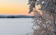 Winter lake (JarkkoS) Tags: winter wallpaper white lake holiday snow cold ice water finland newyear kaarina newyearsday 1920x1200 uusivuosi littoinen littoistenjärvi d700 2470mmf28g