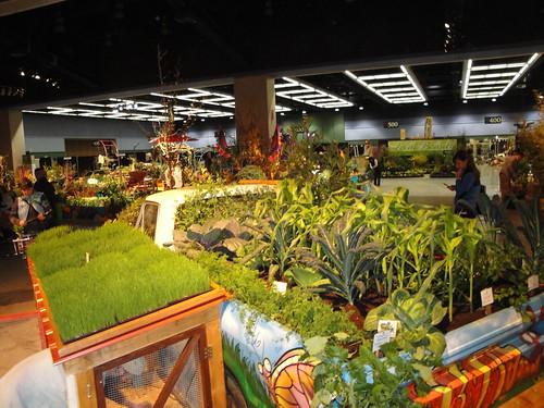 Urban Farm 2