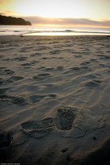 Whangamata BP 188 (Canterbury Student Life) Tags: studentlife beachproject