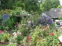 Wingswept Gardens